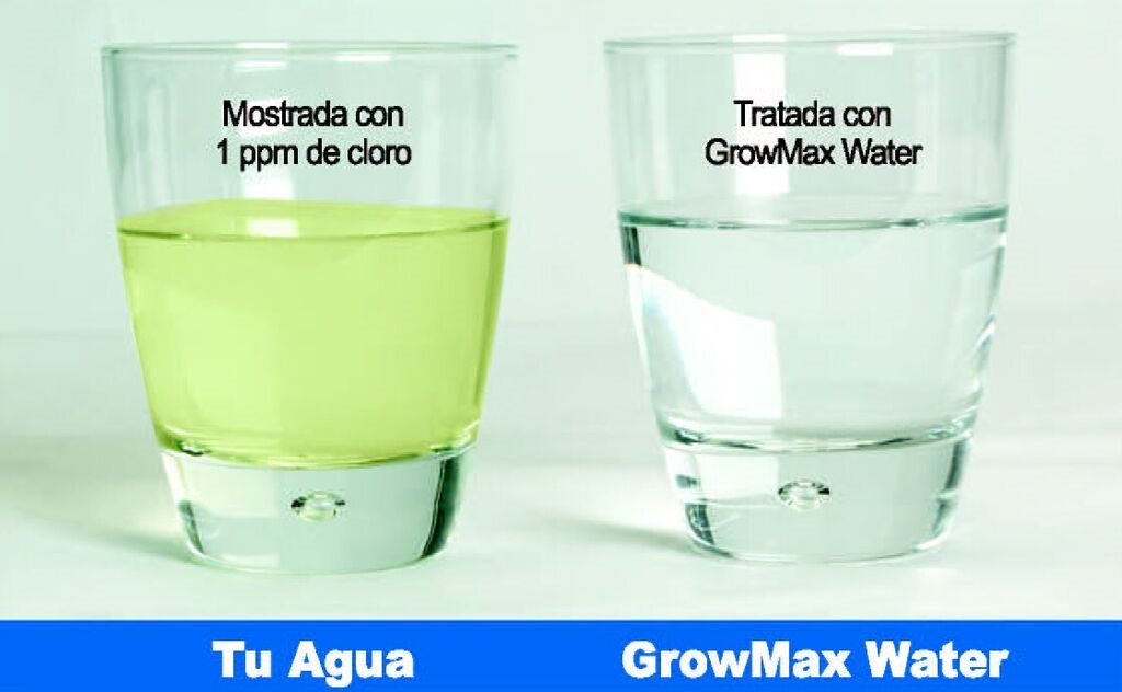 BLOG GrowMax Waterbajar EC agua Archivos - BLOG GrowMax Water
